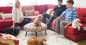 DogVacay inches toward profitability with pet sittingbusiness