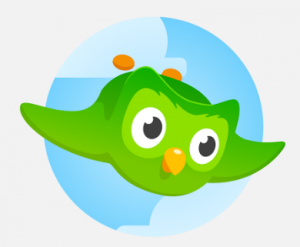 Duolingo launches paid subscriptions as it struggles to monetize its service