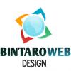 Bintaro Web