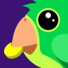 Budgy App