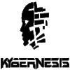 Kybernesis